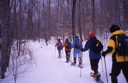 Adirondack snowshoe group